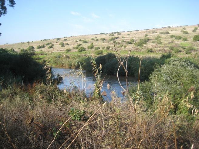 Jordan before flowing into Galilee