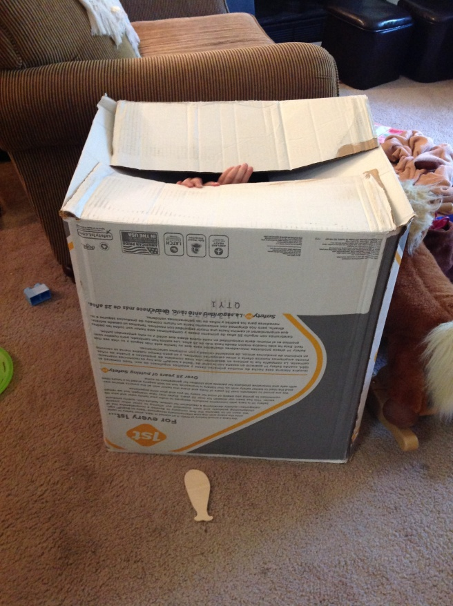 This carseat box was golden entertainment for a day and a half. During this picture, Hope, Sophia, and Gracie were in the box hiding from a storm.