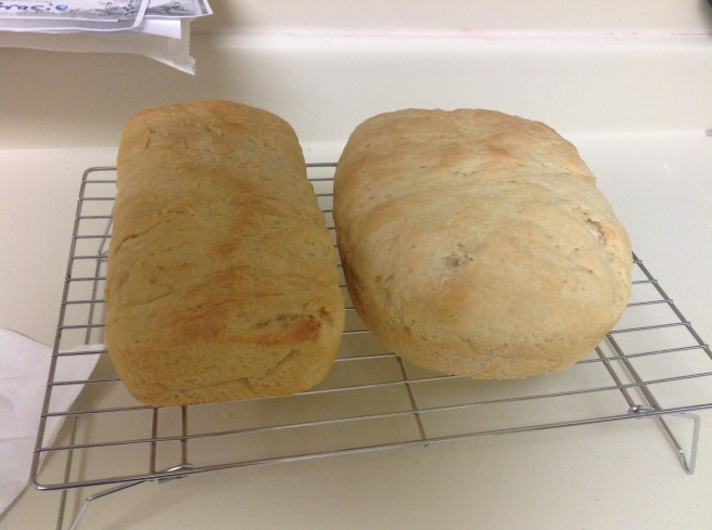 We really made bread! After a whole day of work on it, it was so yummy! Crusty on the outside, soft on the inside. Hooray!