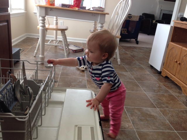 My New Dishwasher Assistant