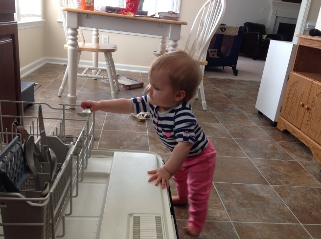 My new dishwasher assistant.